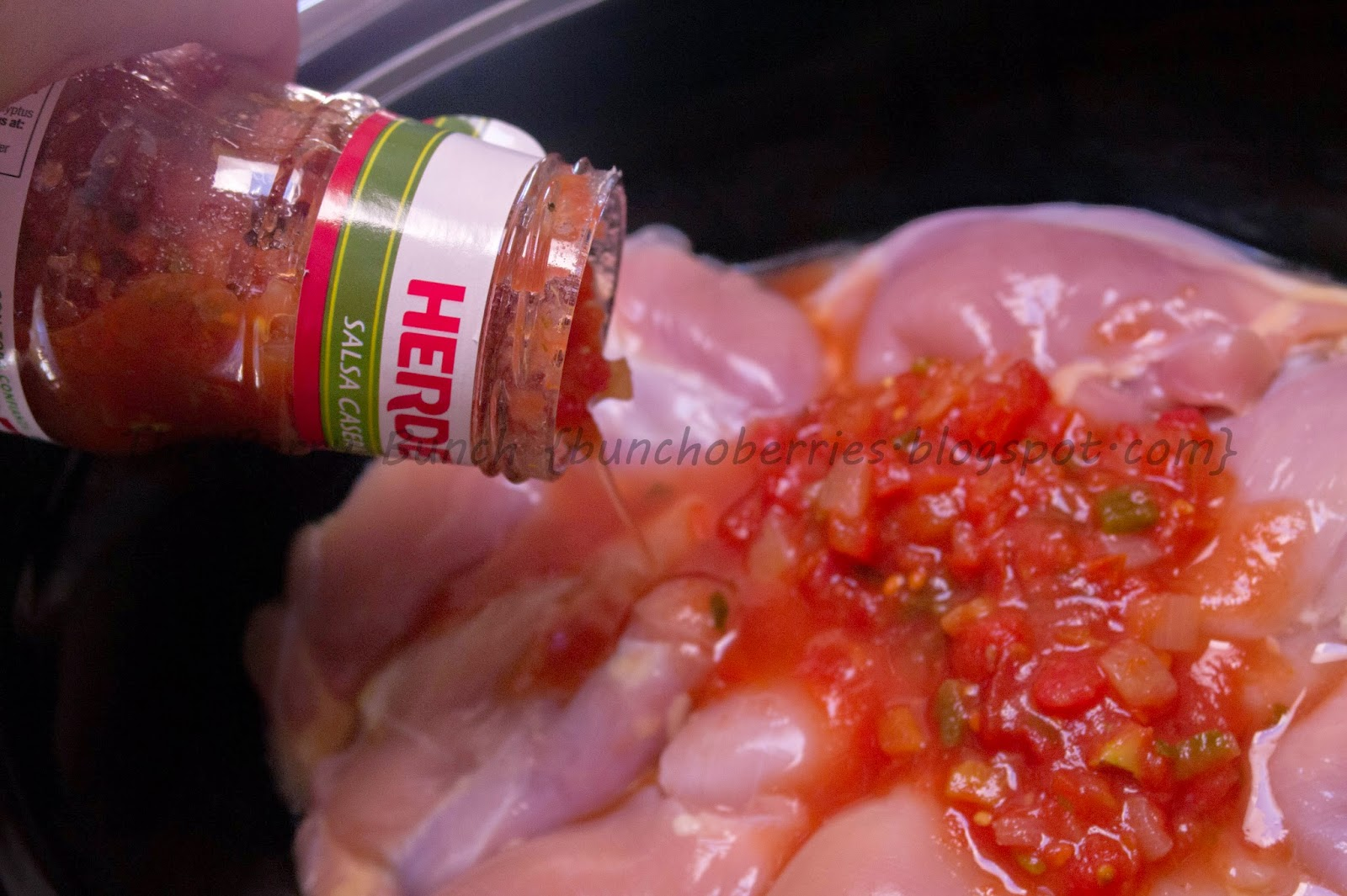 The Berry Bunch: What's for Dinner: Chicken Con Salsa (3-Ingredient Crock-Pot Recipe)