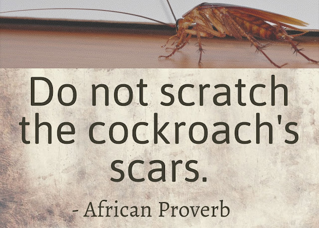 Beautifully Rotten Cockroach problem African Proverb