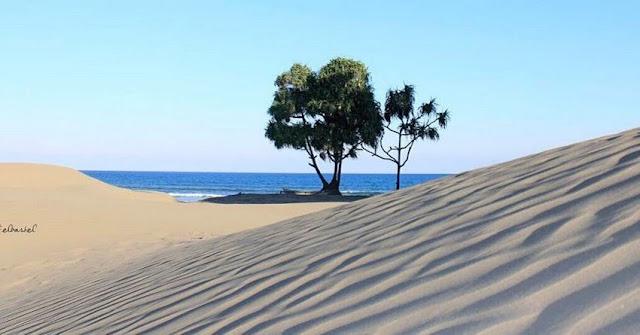 Landscape pemandangan Pantai oetune Kupang