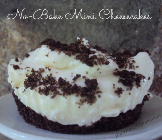 NoBake Mini Greek Yogurt Cheesecakes Flour Me With Love