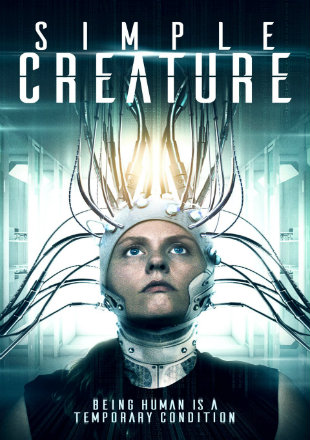 Simple Creature 2016 HDRip 280Mb English Movie 480p Watch Online Full Movie Download bolly4u