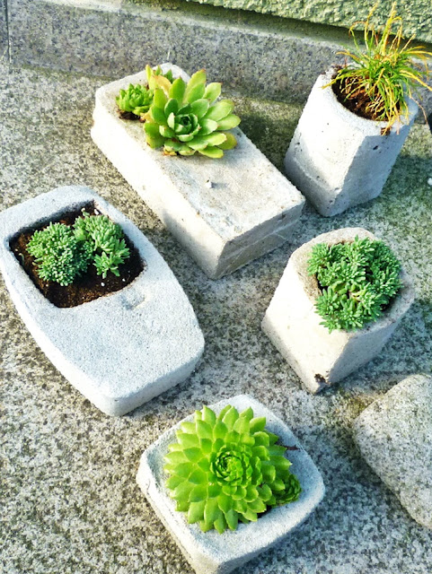 Betongefaesse selbstgemacht - bepflanzt