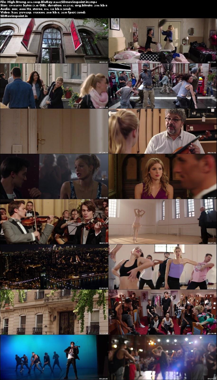Screen Shots High Strung 2016 Full HD Movie Download 720p