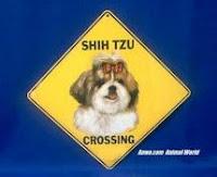 Shih Tzu Crossing Sign