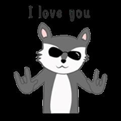 Silly Raccoon