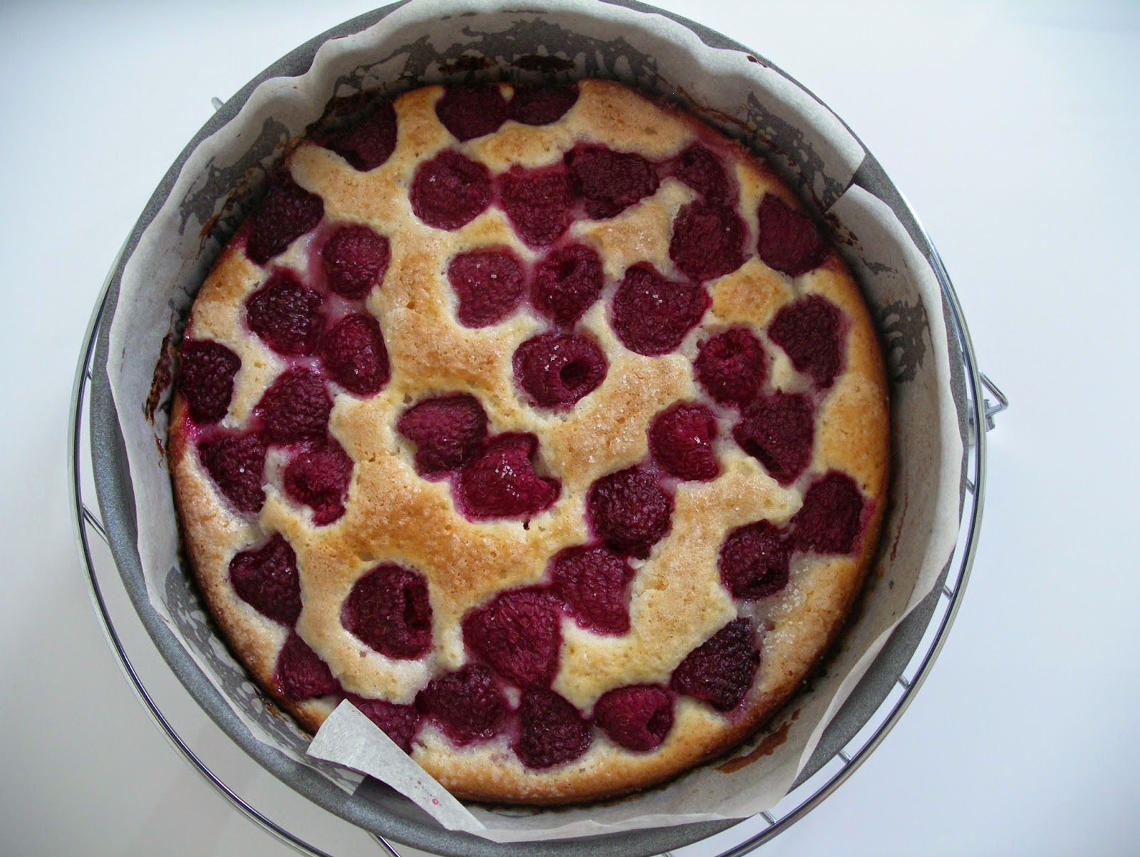 Raspberry laban cake out from the oven