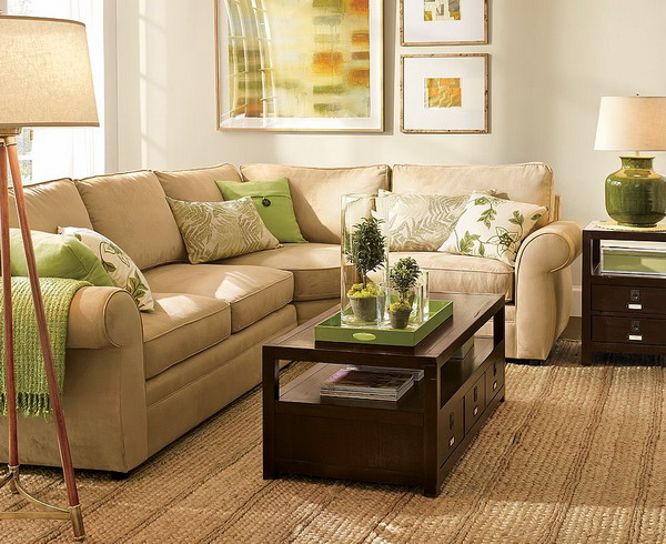 Chocolate Brown and Mint Color Scheme Living Room Ideas