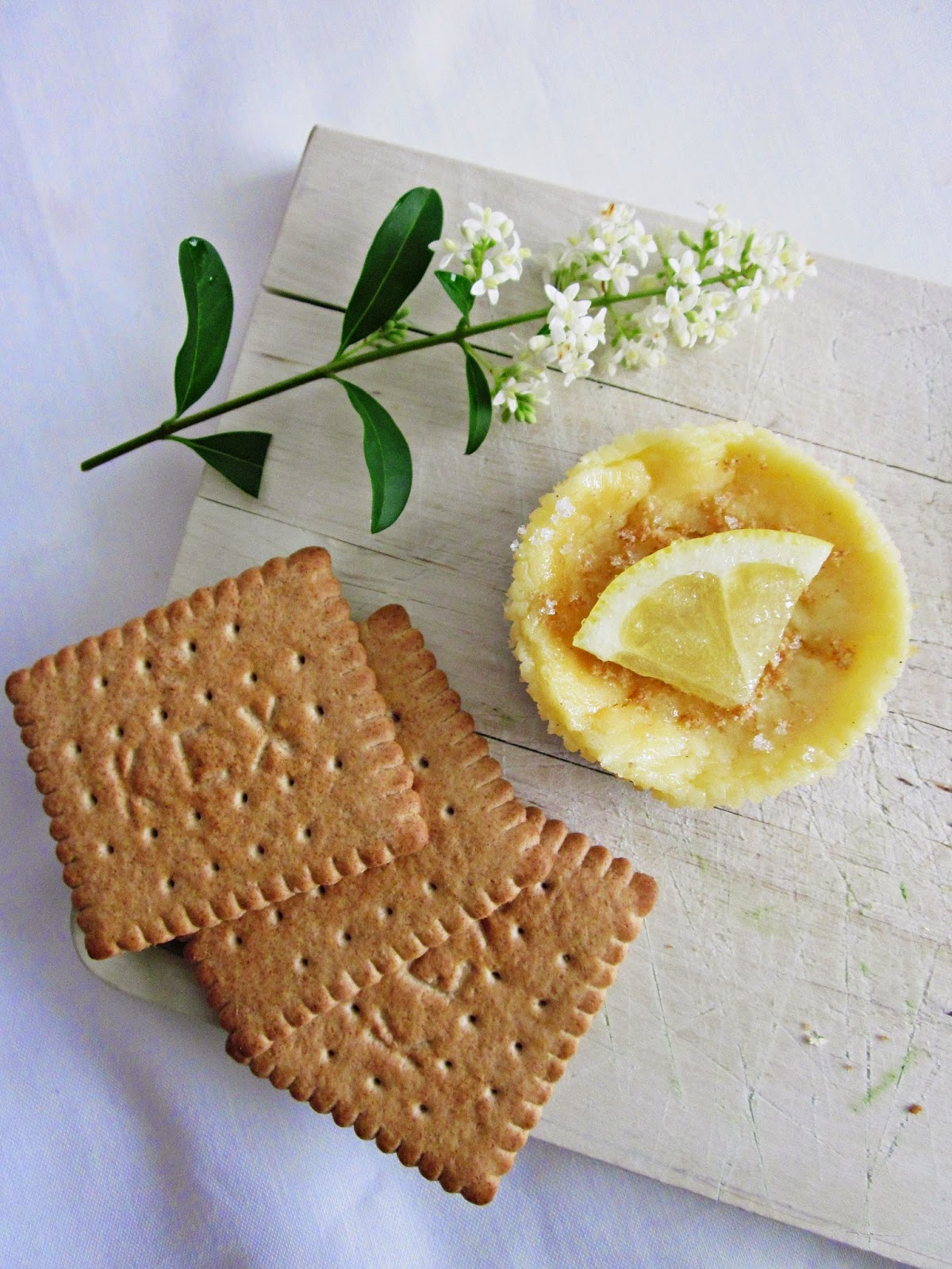 Zitronen-Cheesecakes mit Keks
