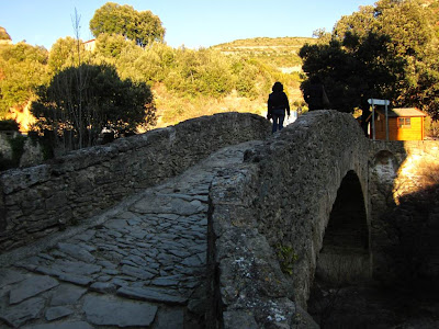 Romanesque bridge in Sant Miquel del Fai