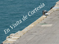 https://bloguerosdehistoria.blogspot.com/2017/08/en-visita-de-cortesia.html