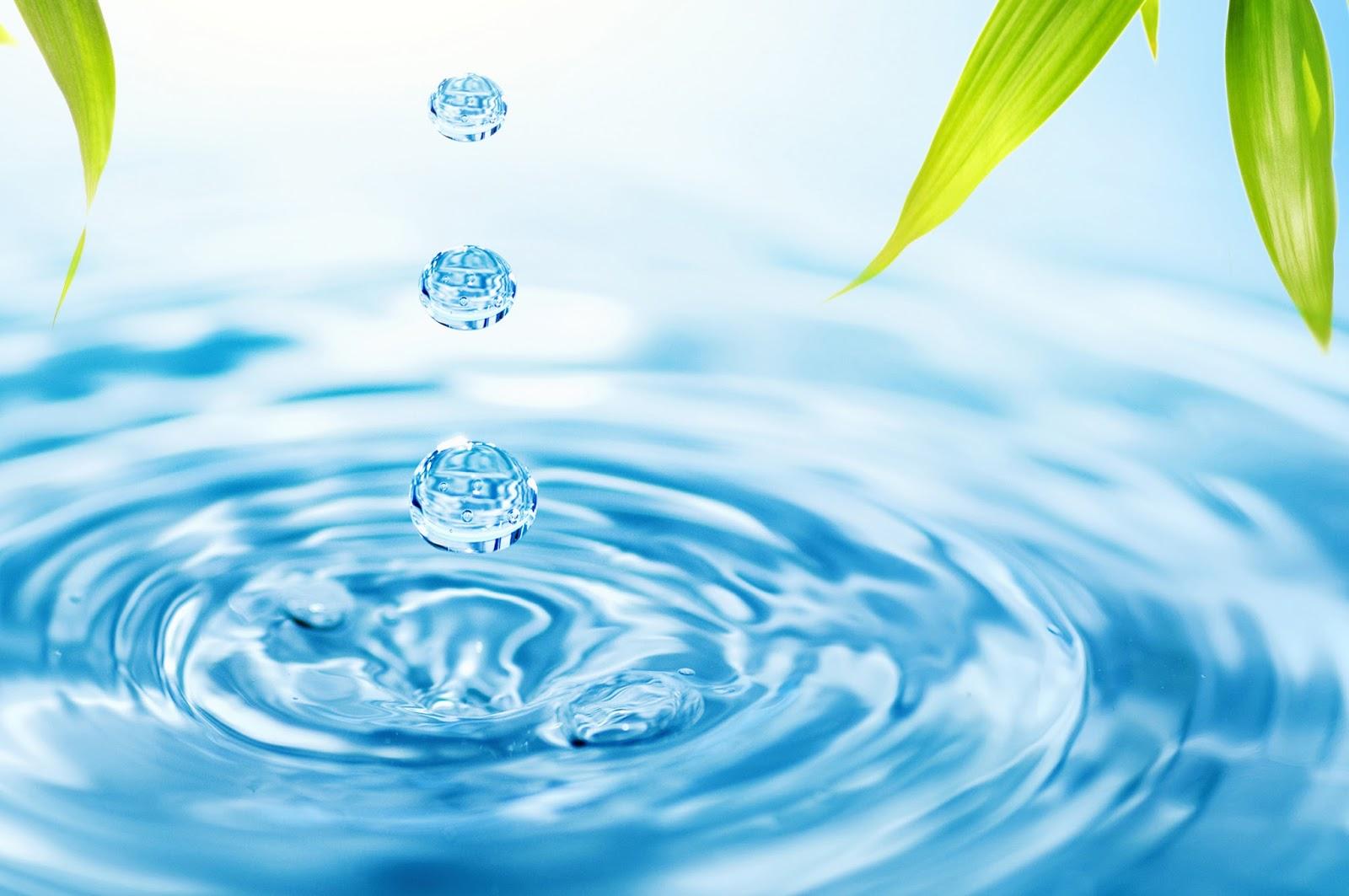 Apa Itu Tablet Tcca Ksm Klorinator Tempat Melarutkan Kaporit Keberadaan Air Bersih Dan Sehat Adalah Kebutuhan Mutlak Dari Kehidupan Kita Sehari Hari Tersebut Bisa Gunakan Untuk Mencuci