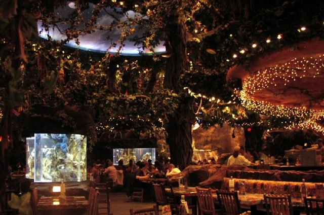 Restaurante  Rainforest Cafe na Disney em Orlando