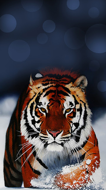 Tiger Wallpaper iPhone 6S Plus