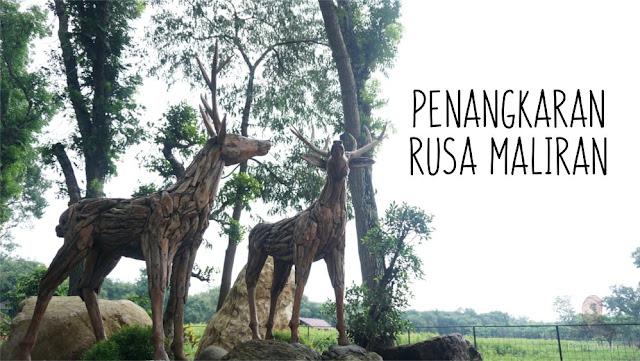 Patung Rusa di Maliran
