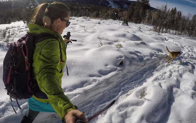 Cross Country Skiing in the Uintas, North Fork Provo XC Ski Trail