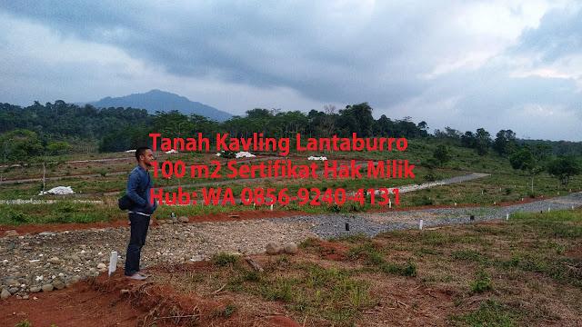 KAVLING-BUAH-LANTABURRO-TANJUNGSARI-jual-tanah-di-bogor-murah-KAVLING-LANTABURO-KARYAMEKAR-TANJUNGSARI