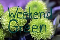 http://mascha-colorofhope.blogspot.de/2017/09/weekend-green-26.html