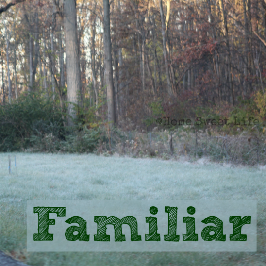 Five minute friday writing prompt, familiar, family heritage