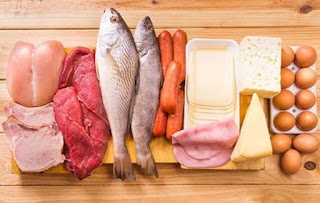 Why You Should Eat Animal Protein for Excellent Health