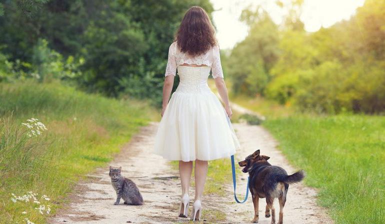 un site de ventes priv es pour nos chiens woof mag 39 le blog des chiens heureux. Black Bedroom Furniture Sets. Home Design Ideas