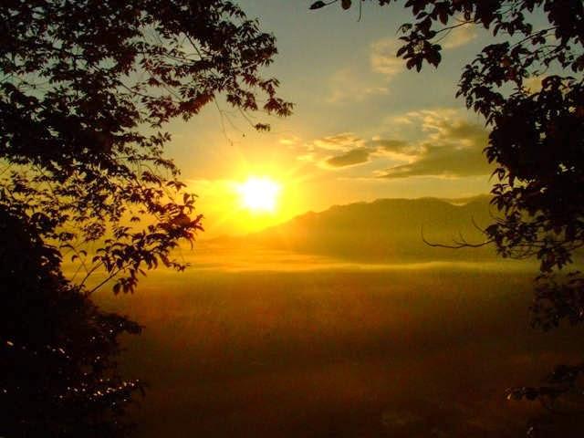 Sunset Taman Nasional Gunung Palung