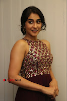 Actress Regina Candra Latest Stills in Maroon Long Dress at Saravanan Irukka Bayamaen Movie Success Meet .COM 0021.jpg