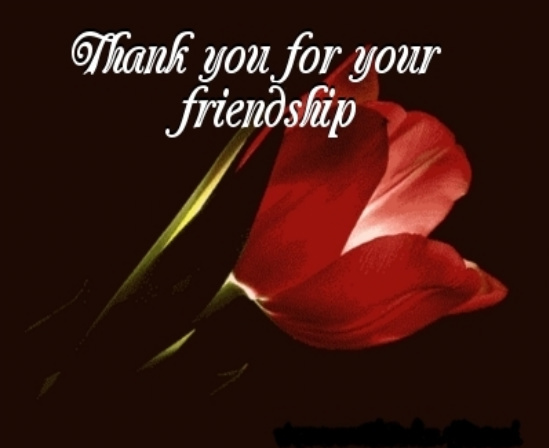 SueRaypole.com: FRIENDSHIP