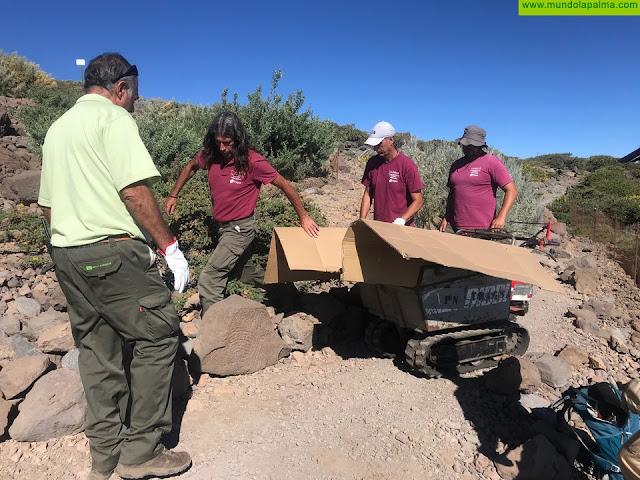 El Cabildo recupera un grabado rupestre benahoarita en los bordes de la Caldera de Taburiente