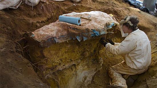 'Dinossauros da NASA' - terreno da Agência espacial está repleta de rastros de animais pré-históricos - Img 1