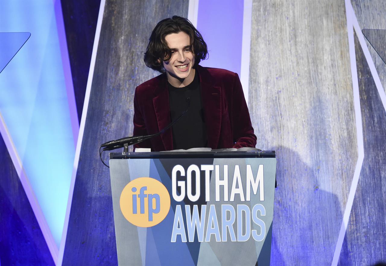 Gotham Awards 2017  Timothée Chalamet