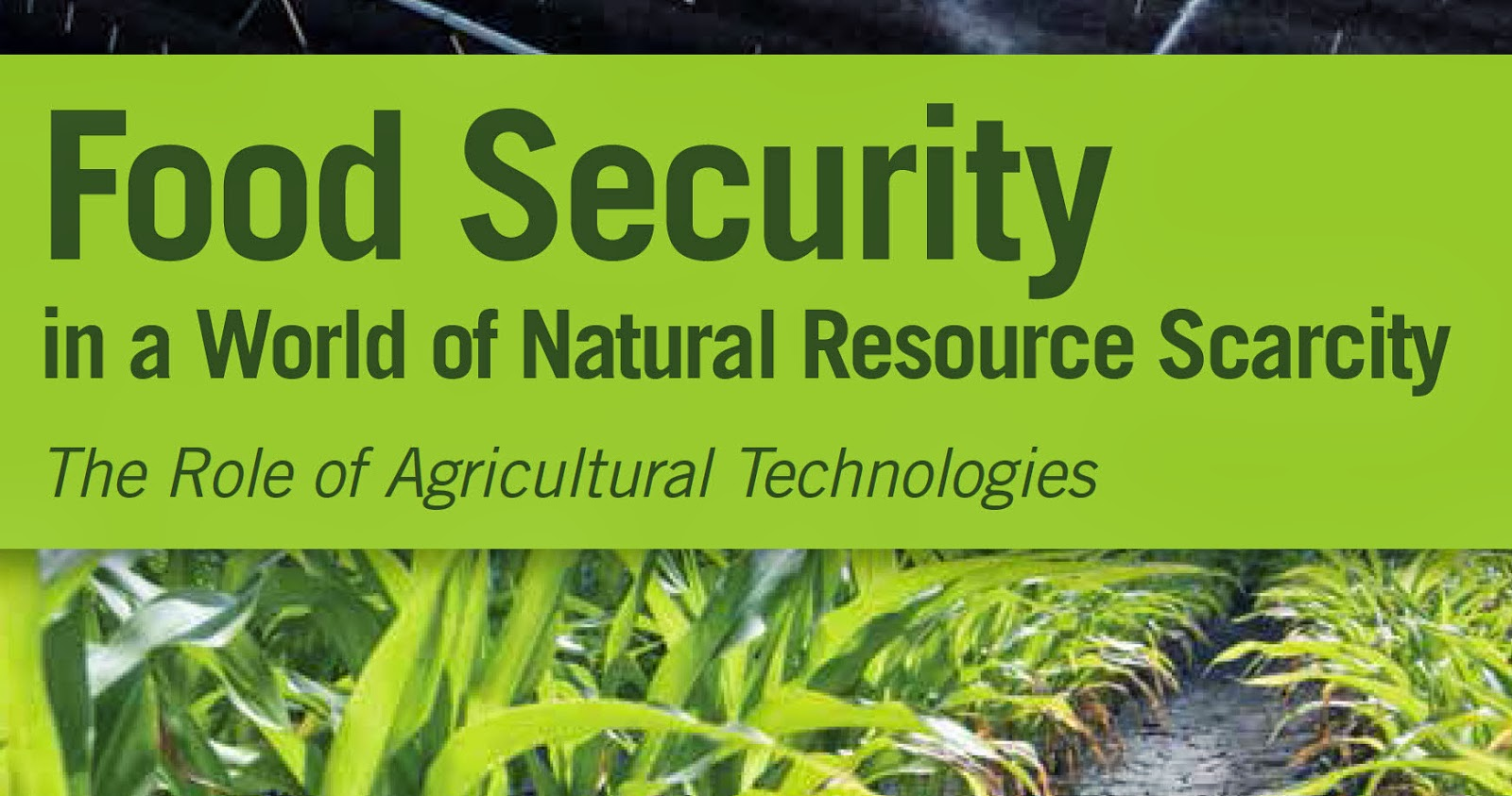 local food security expert - HD1600×843