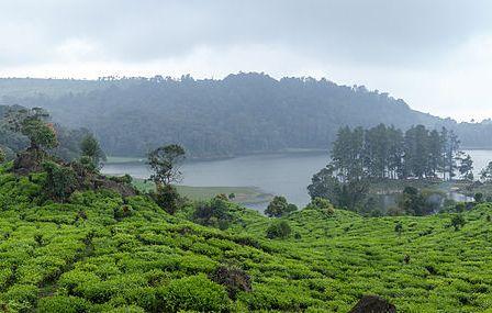 Situ Patenggang, Jawa Barat