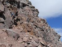 A mountain goat watches a human mountain goat on Pyramid Peak