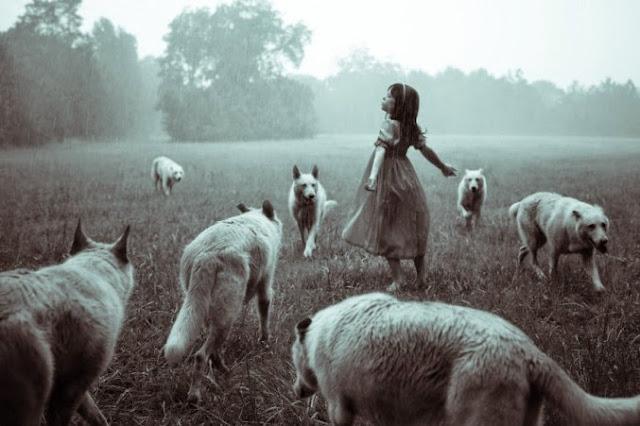 niña con libertad y muchos lobos