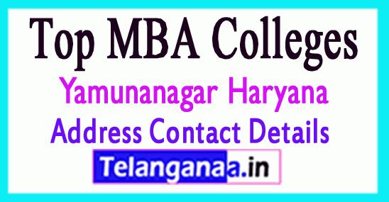 Top MBA Colleges in Yamunanagar Haryana
