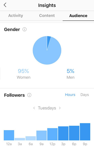 Instagram Audience Insights