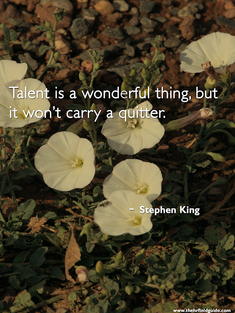 """Talent Is A Wonderful Thing. . ."""