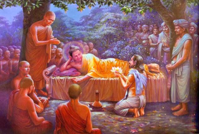 Đạo Phật Nguyên Thủy - Đường Xưa Mây Trắng - Chương 79: Nấm chiên đàn