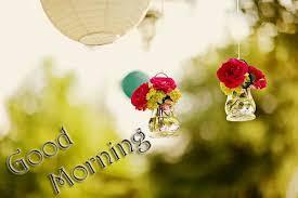 50 good morning images pictures photos digital duniya