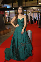 Raashi Khanna in Dark Green Sleeveless Strapless Deep neck Gown at 64th Jio Filmfare Awards South ~  Exclusive 153.JPG