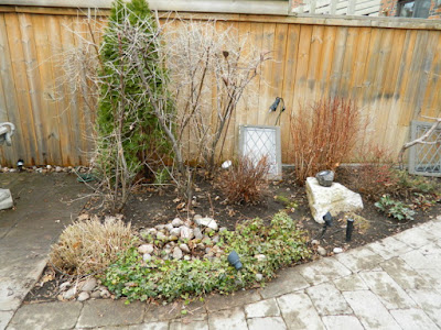 Leaside Back Garden Spring Cleanup After by Paul Jung Gardening Services--a Toronto Organic Gardening Company