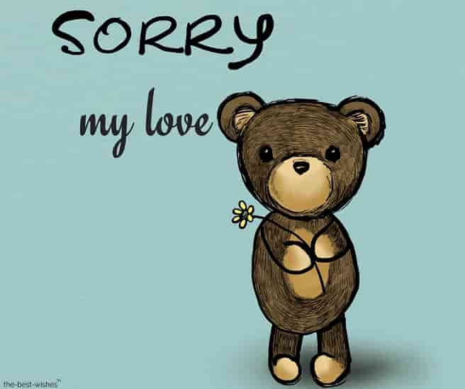 sorry my love with brown teddy bear