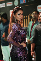 Shilpi Sharma looks Glamorous in Transparent Purple Glittering Gown at IIFA Utsavam Awards 026.JPG