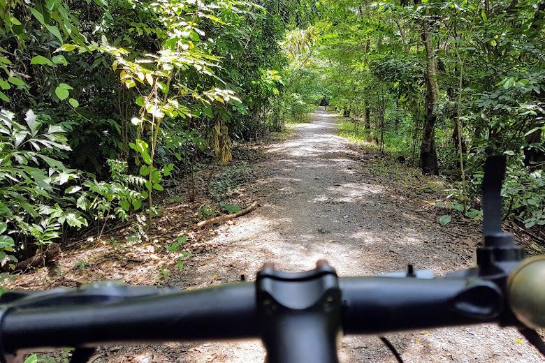 迷路在 Sri Nakhon Khuean Khan 公園內