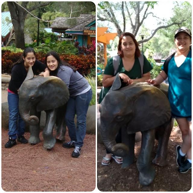 Busch Gardens em 2013 e em 2018.