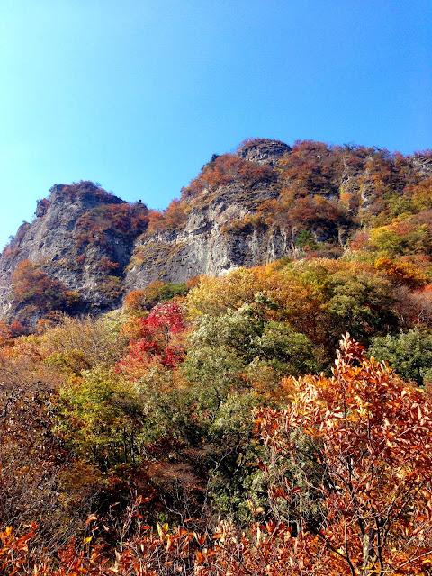 見晴台からの「紅葉に映える妙義山」