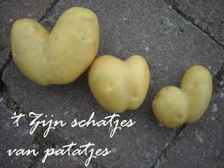 Afbeeldingsresultaat voor schatjes van patatjes