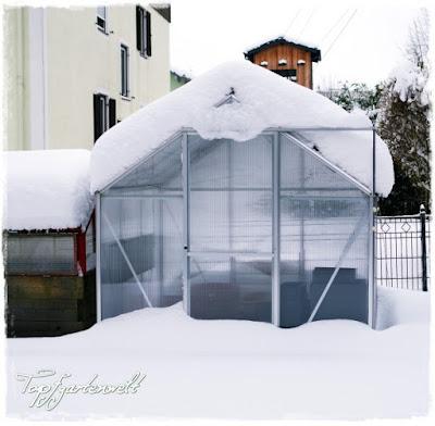 Gartenblog Topfgartenwelt Winter: verschneites Gewächshaus