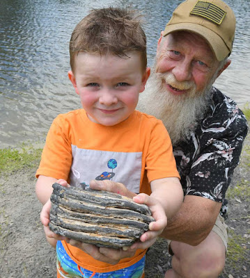 Τρίχρονος εντόπισε δόντι από μαμούθ στη Φλόριντα