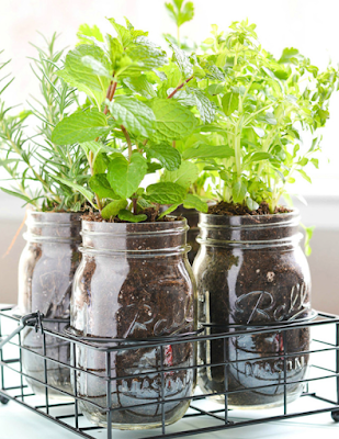 DIY Gardening Projects for Spring